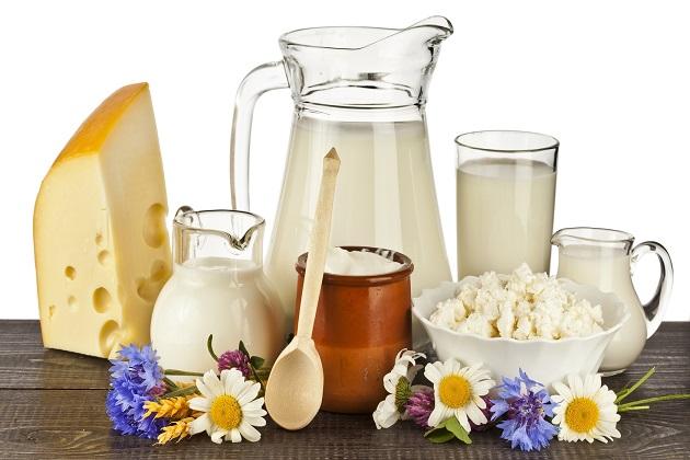 Αποτέλεσμα εικόνας για γαλακτοκομικά προϊόντα